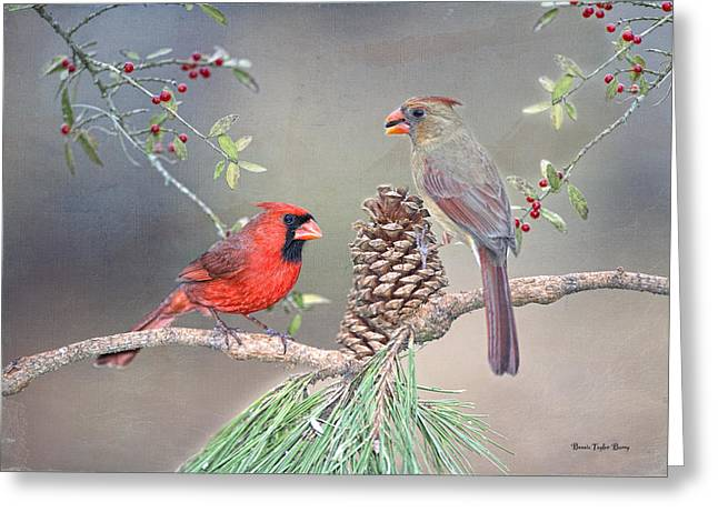 Female Northern Cardinal Greeting Cards - Cardinals in Pine and Holly Greeting Card by Bonnie Barry