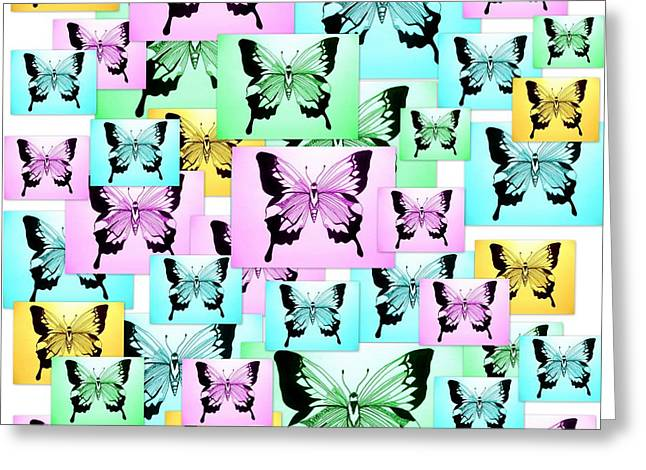 Cushion Drawings Greeting Cards - Carefree Butterflies Greeting Card by Cathy Jacobs