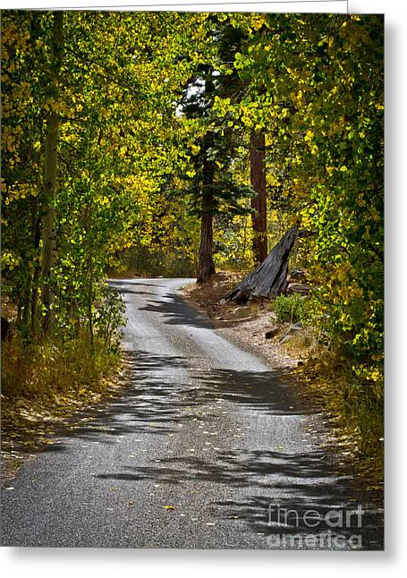 Carefree Highway Greeting Card by Mitch Shindelbower
