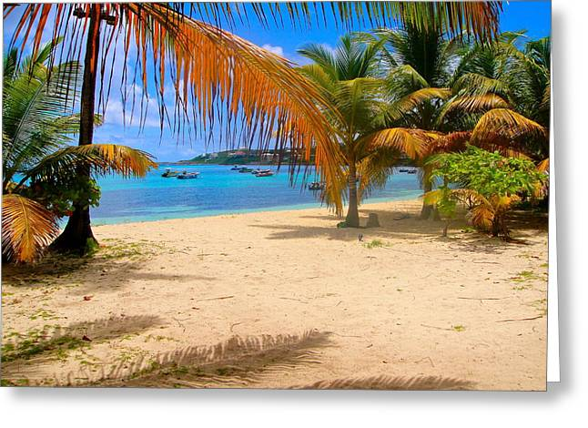 Vaction Greeting Cards - Caribbean beach in Anguilla Greeting Card by Jennifer Lamanca Kaufman