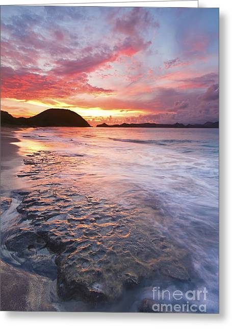 Caribbean Beach Sunset Greeting Card by Katherine Gendreau