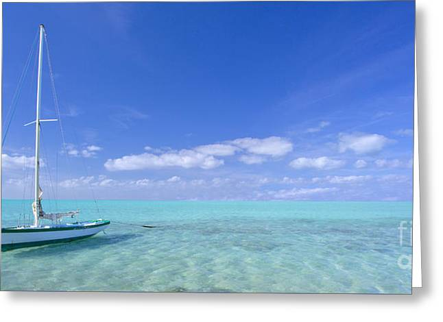 Caribbean Chill Time Greeting Card by Marco Crupi