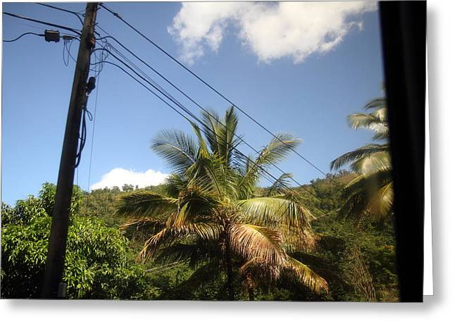 Cruise Greeting Cards - Caribbean Cruise - Dominica - 121263 Greeting Card by DC Photographer