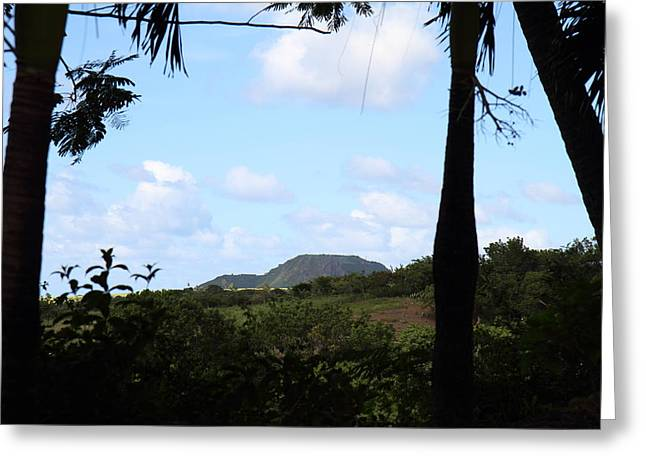 Island Greeting Cards - Caribbean Cruise - St Kitts - 1212210 Greeting Card by DC Photographer