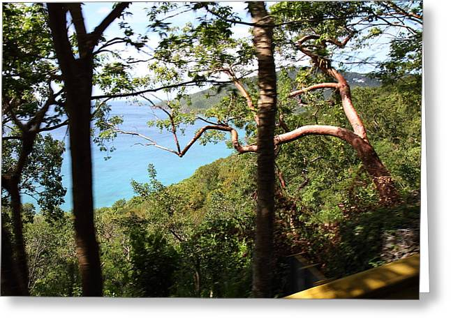 Caribbean Cruise - St Thomas - 1212107 Greeting Card by DC Photographer