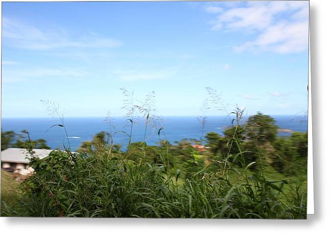 Caribbean Greeting Cards - Caribbean Cruise - St Thomas - 1212178 Greeting Card by DC Photographer