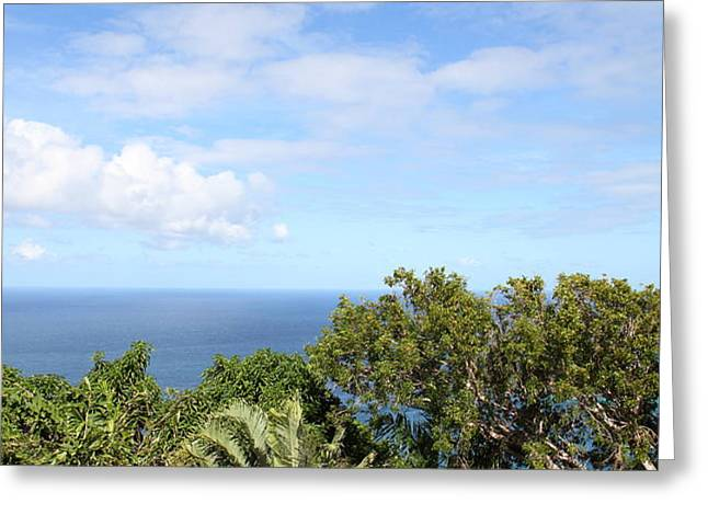 Caribbean Cruise - St Thomas - 1212215 Greeting Card by DC Photographer