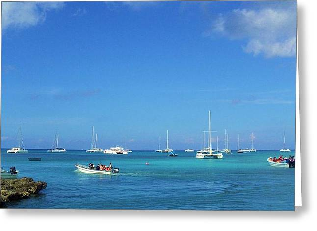 Bayahibe Greeting Cards - Caribbean Horizon Greeting Card by Iryna Burkova