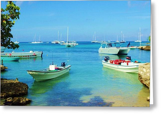 Bayahibe Greeting Cards - Caribbean Shore Greeting Card by Iryna Burkova