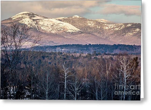 Winter In Maine Greeting Cards - Caribou-Speckled Mountain Wilderness Greeting Card by Susan Cole Kelly