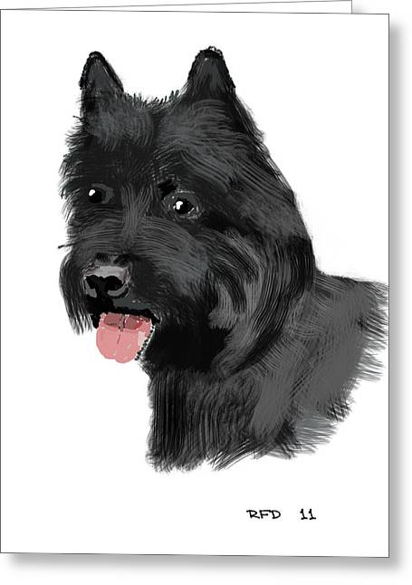 Owner Digital Greeting Cards - Carin terrier Greeting Card by Bob Donner