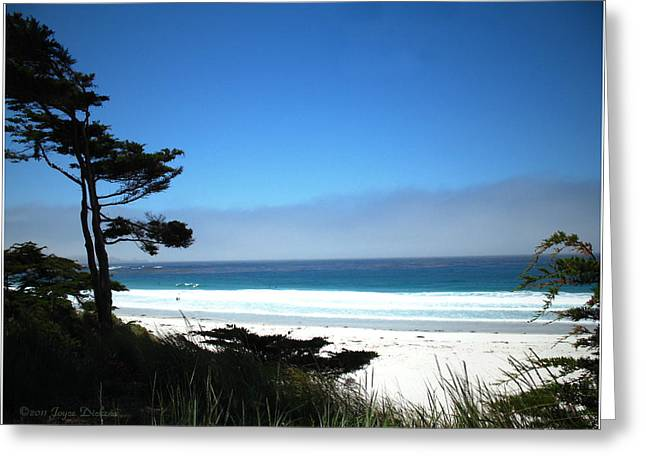 Breezy Greeting Cards - Carmel Beach California USA Greeting Card by Joyce Dickens