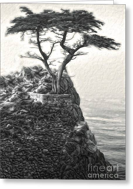 Gregory Dyer Greeting Cards - Carmel California - Lone Pine - 03 Greeting Card by Gregory Dyer
