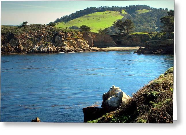 Point Lobos Greeting Cards - Carmel Meadows Beach At Point Lobos Three Greeting Card by Joyce Dickens