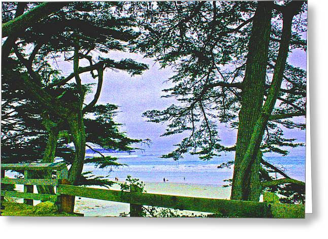 Scenic Drive Digital Greeting Cards - Carmel and her Fences  Greeting Card by Joseph Coulombe