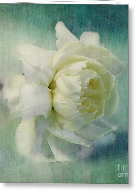 Turquoise Pastel Greeting Cards - Carnation Greeting Card by Priska Wettstein