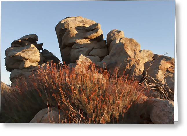 Best Sellers -  - Rocks Greeting Cards - Carns and Daisies Greeting Card by Scott Campbell