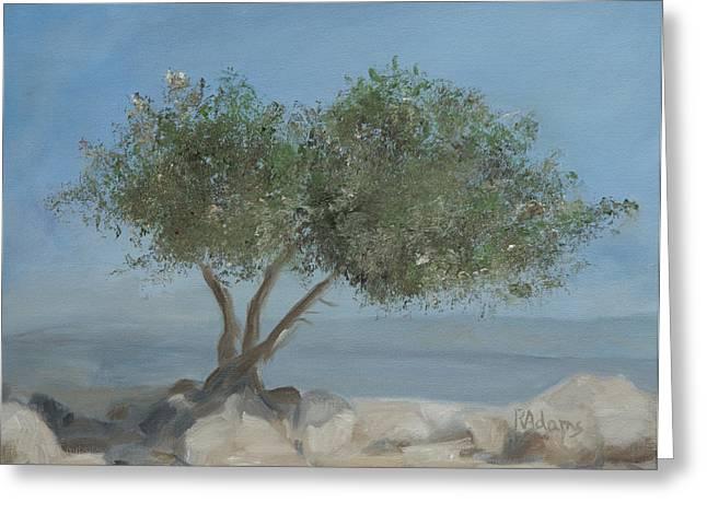 Jordan Paintings Greeting Cards - Carob tree on Mt. Arbel  Greeting Card by Rita Adams