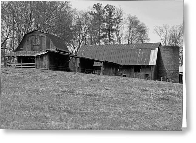 Barn And Silo Greeting Cards - Carolina Barns and Silo in Black and White Greeting Card by Suzanne Gaff