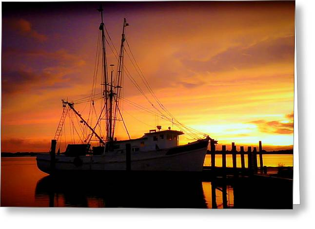 Carolina Morning Greeting Card by Karen Wiles