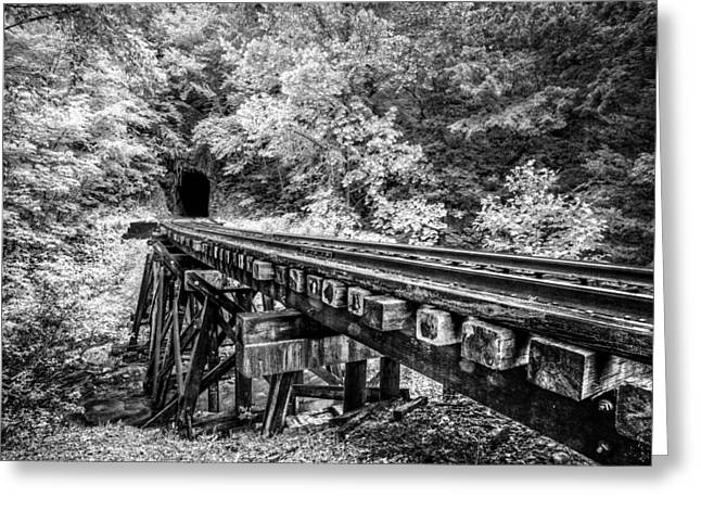 White River Scene Greeting Cards - Carolina Railroad Trestle in Black and White Greeting Card by Debra and Dave Vanderlaan