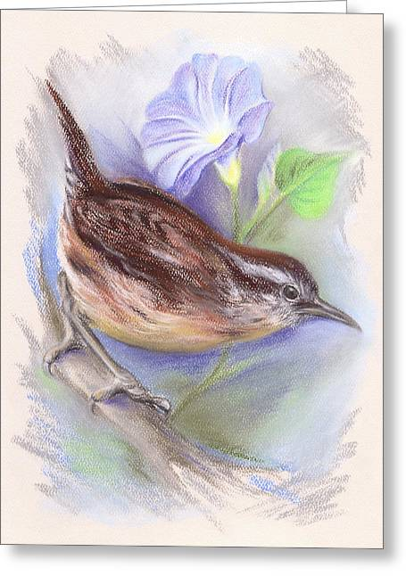 Wild Life Pastels Greeting Cards - Carolina Wren with Morning Glory Greeting Card by MM Anderson