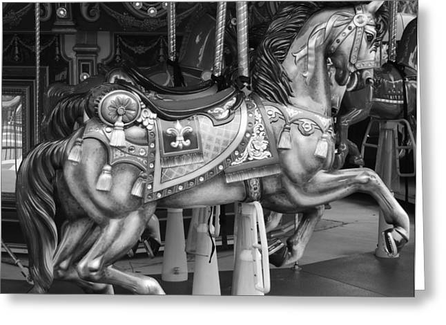 Carousel Horse In Black And White Greeting Card by Rob Hans