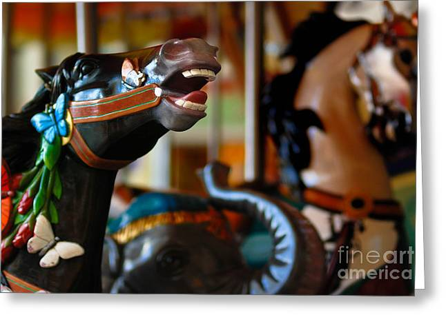 Wooden Ship Greeting Cards - Carousel Horses Greeting Card by Amy Cicconi