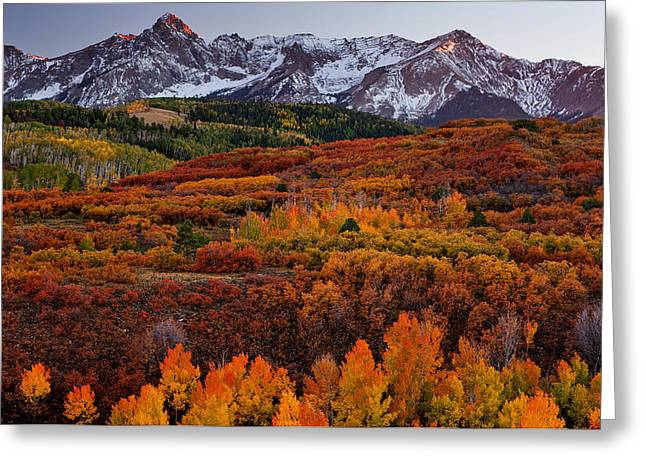 Landscape. Scenic Greeting Cards - Carpet of Color Greeting Card by Darren  White