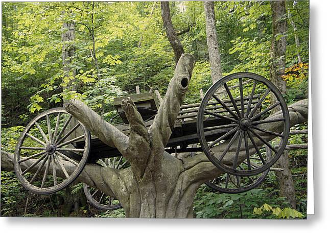 Horse And Cart Greeting Cards - Carraige in the Tree Greeting Card by Laurie Perry