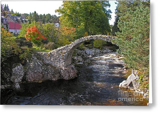 Packhorse Greeting Cards - Carrbridge Autumn Greeting Card by Phil Banks