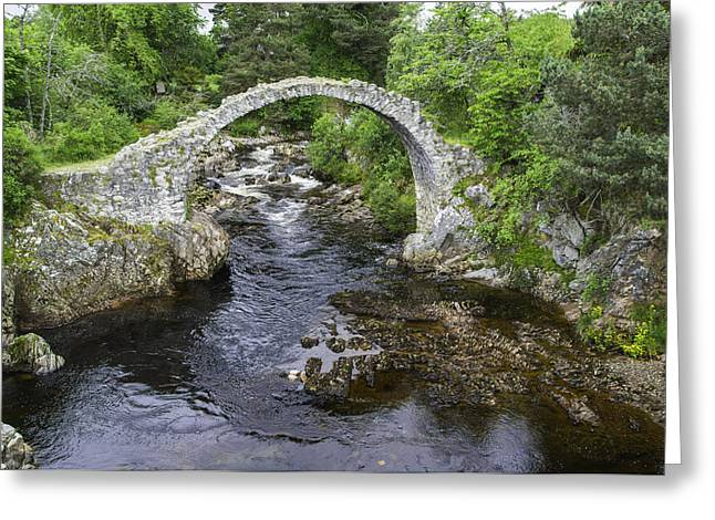 Packhorse Greeting Cards - Carrbridge Scotland Greeting Card by Alan Toepfer