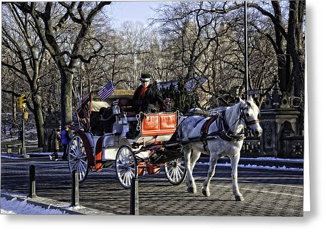 Carriage Driver - Central Park - NYC Greeting Card by Madeline Ellis