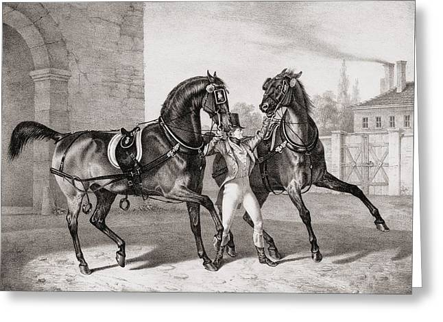 Collar Drawings Greeting Cards - Carriage Horses For The King Greeting Card by French School