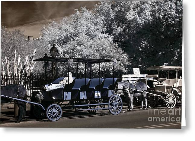 Photographers Decatur Greeting Cards - Carriage Nap infrared Greeting Card by John Rizzuto