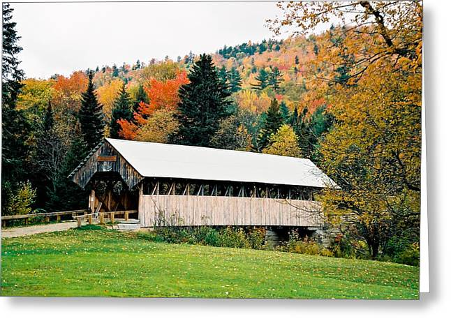 Carriage Road in Autumn Greeting Card by Debbie Lloyd