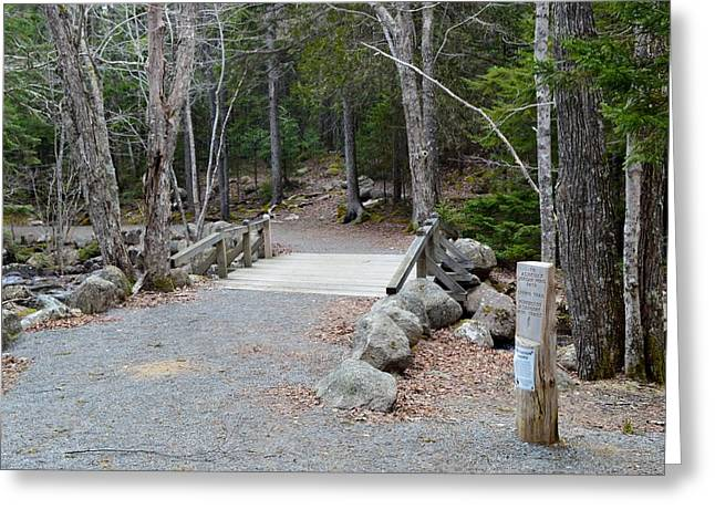 Jordan Trail Greeting Cards - Carriage Road Trail Acadia Maine Greeting Card by Lena Hatch