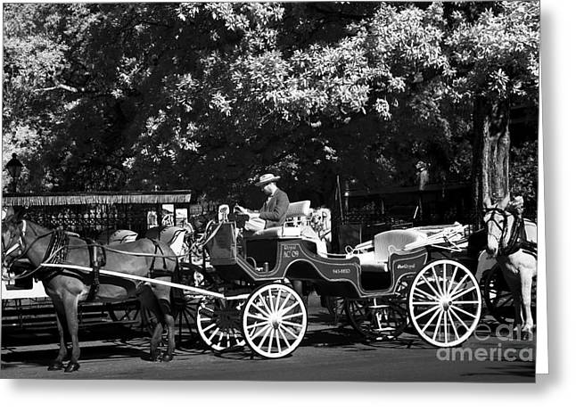 Photographers Decatur Greeting Cards - Carriages in New Orleans infrared Greeting Card by John Rizzuto