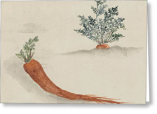 Carrots Greeting Card by Aged Pixel