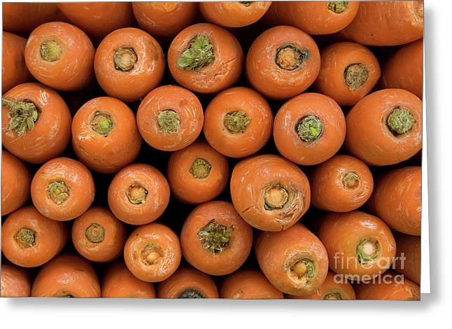Carrots Greeting Card by Rick Piper Photography