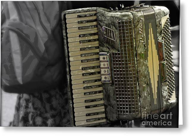 Accordion Greeting Cards - Carrying Pollina  Greeting Card by Steven  Digman