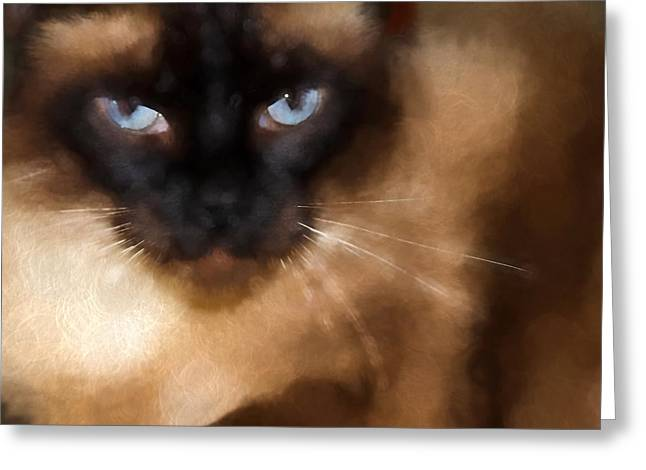 Cats Pyrography Greeting Cards - CarsonTheCat Greeting Card by Edward Cooper