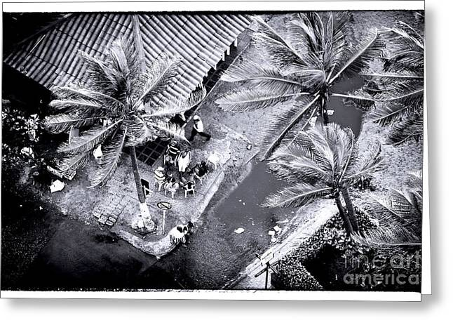 Cartagena Palms Greeting Card by John Rizzuto