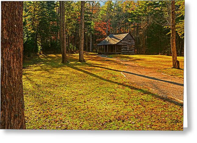 Carter Photographs Greeting Cards - Carter Shields Cabin in November Greeting Card by Johan Hakansson