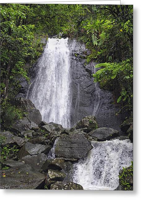 Yunque Greeting Cards - Cascada Blanco Greeting Card by Stephen Anderson