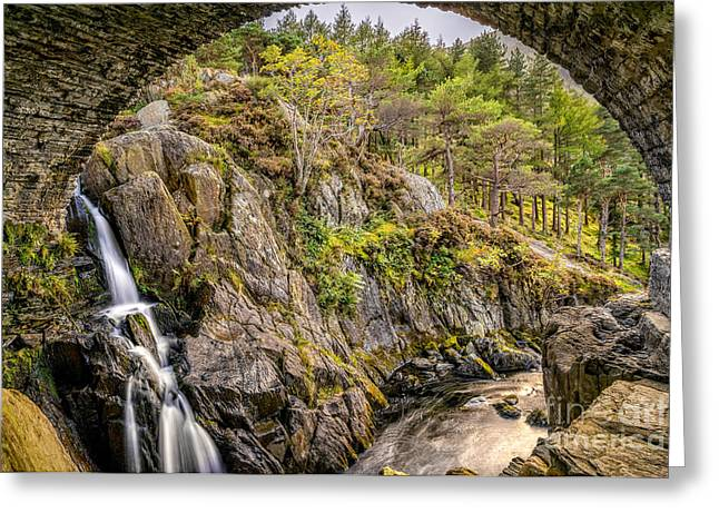 Rapids Greeting Cards - Cascade Creek Greeting Card by Adrian Evans