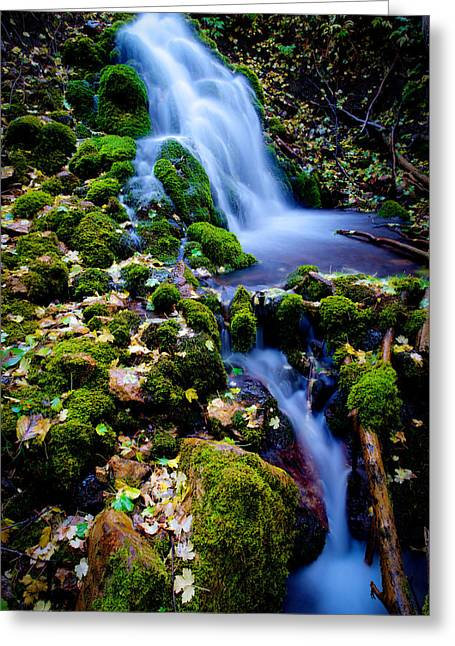 Shot Greeting Cards - Cascade Creek Greeting Card by Chad Dutson