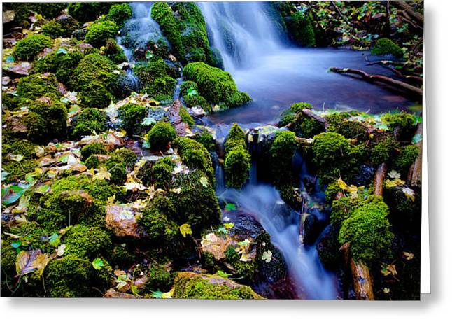 Cascade Creek Greeting Card by Chad Dutson
