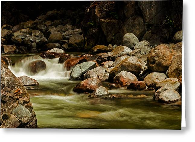 Cascade Creek - Mission B C Greeting Card by Jordan Blackstone