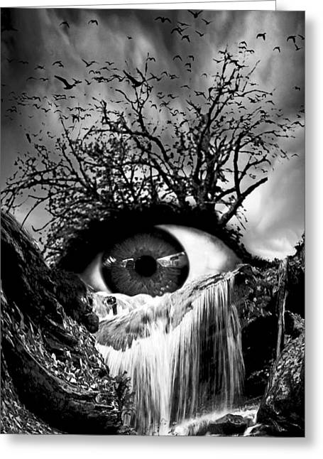 Crying Bird Greeting Cards - Cascade Crying Eye grayscale Greeting Card by Marian Voicu